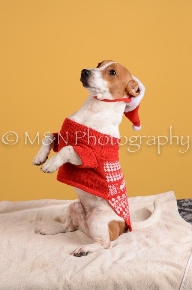 M&N Photography -DSC_4868