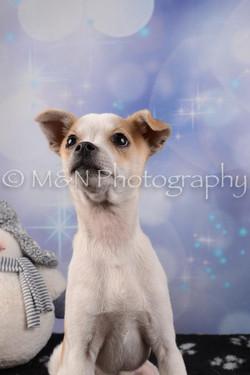 M&N Photography -DSC_6510