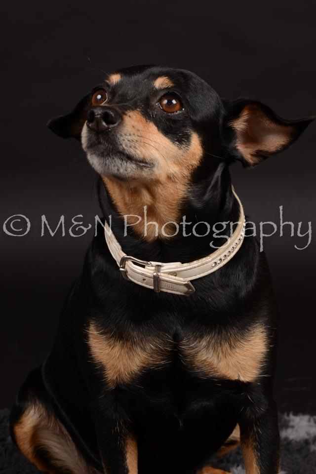 M&N Photography -DSC_9657
