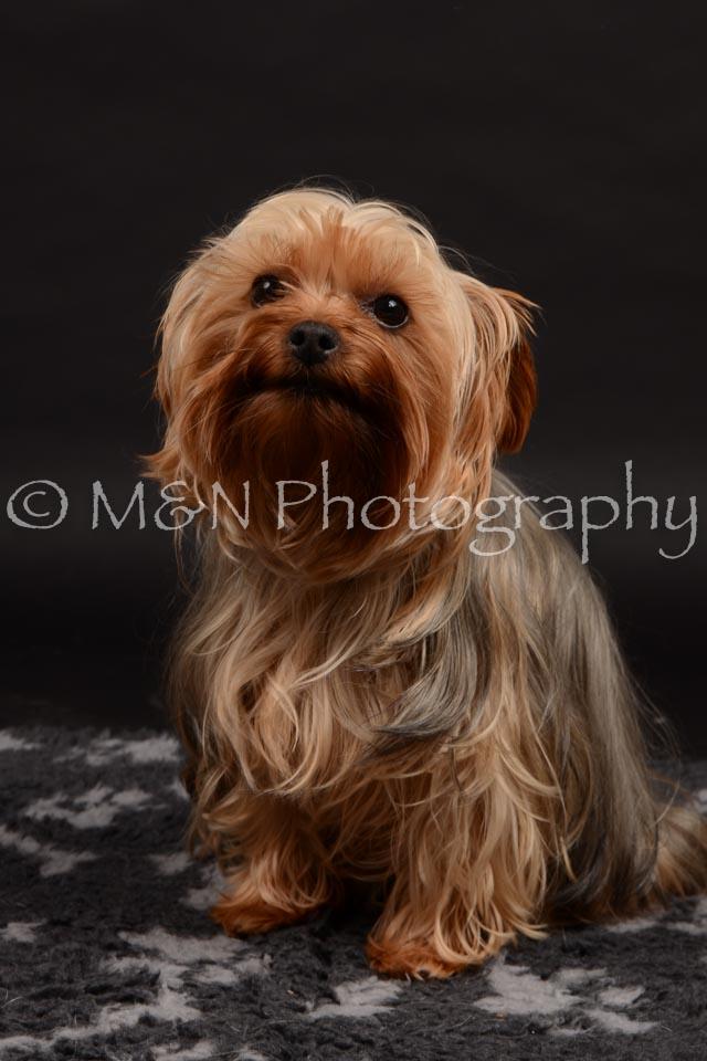M&N Photography -DSC_9708
