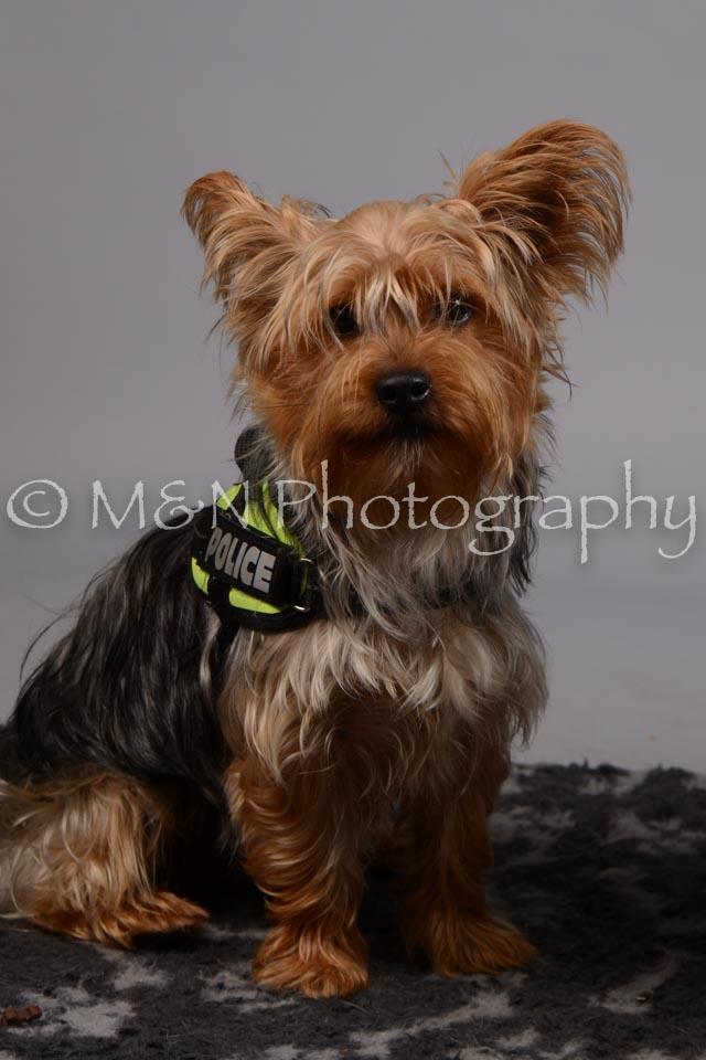 M&N Photography -DSC_2626