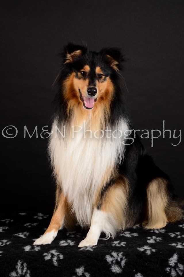 M&N Photography -DSC_5622