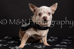 M&N Photography -DSC_5472