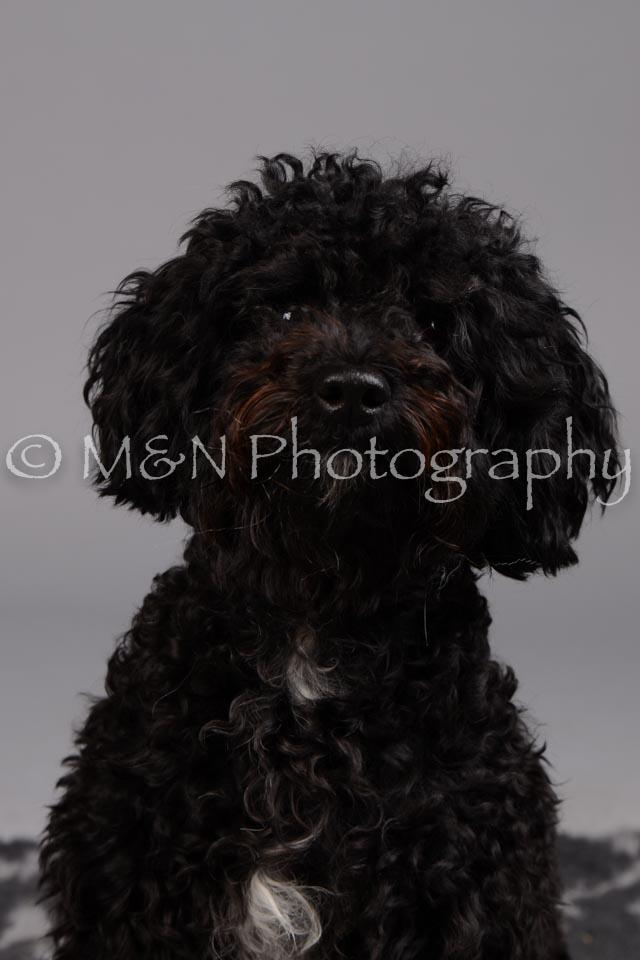 M&N Photography -DSC_2643