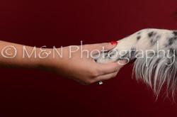 M&N Photography -DSC_3327