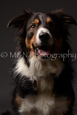 M&N Photography -DSC_2063