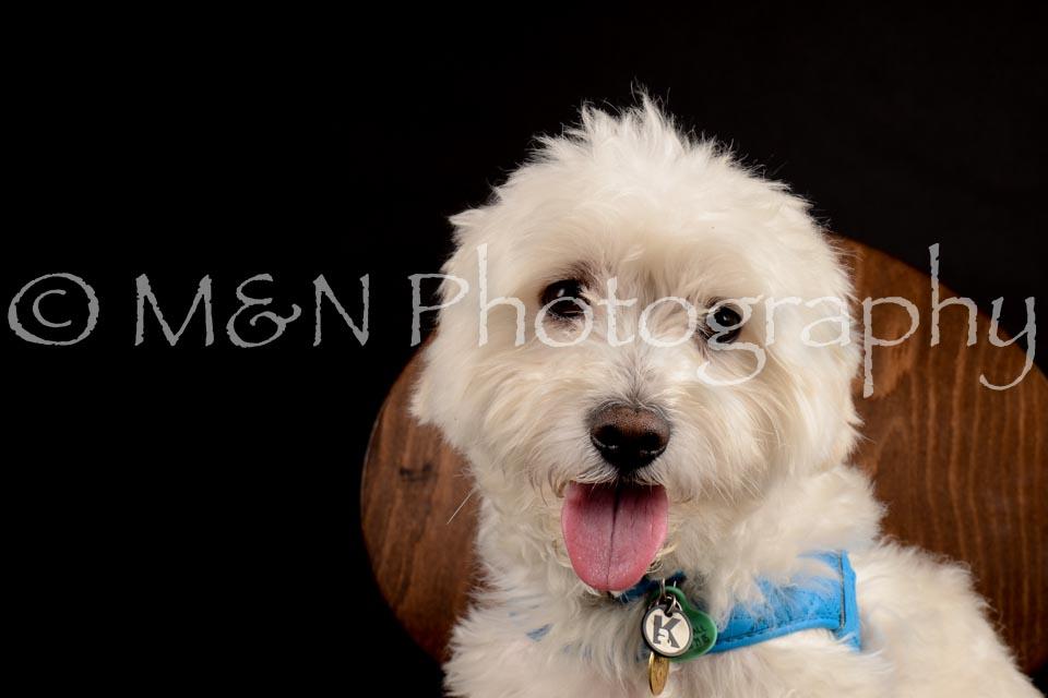M&N Photography -DSC_9789