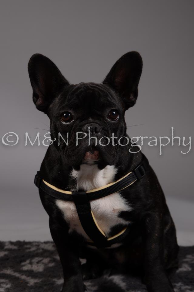 M&N Photography -DSC_1725