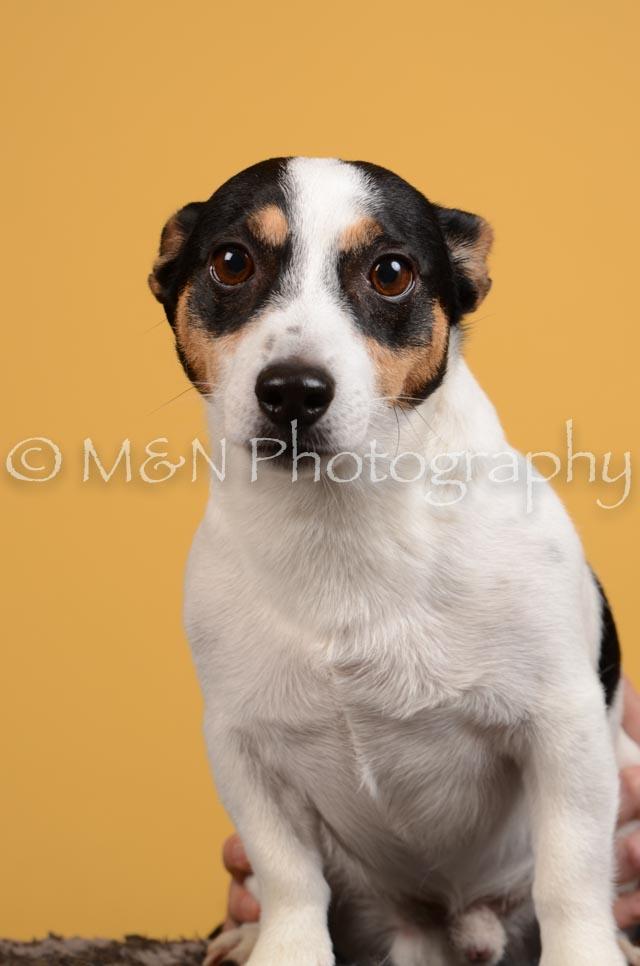 M&N Photography -DSC_4518