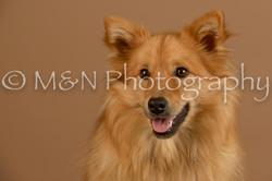 M&N Photography -_SNB0696