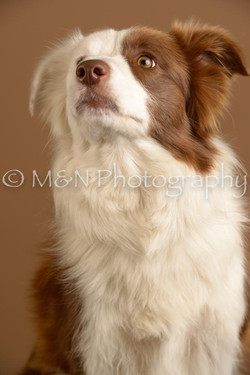 M&N Photography -_SNB0623