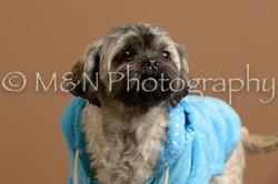 M&N Photography -_SNB0945
