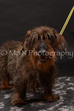 M&N Photography -DSC_9999
