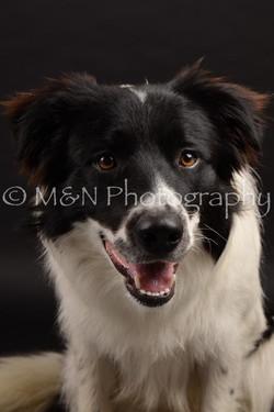 M&N Photography -DSC_9724