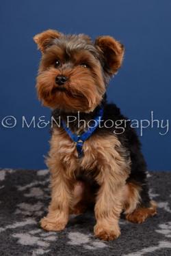 M&N Photography -DSC_5224