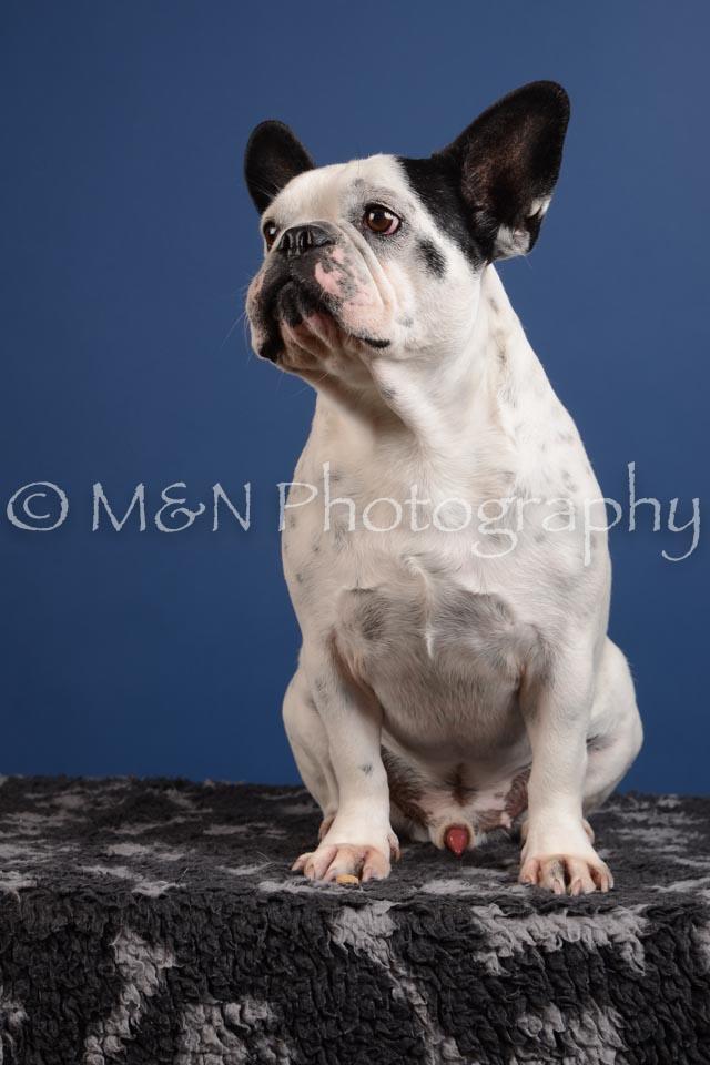 M&N Photography -DSC_5007