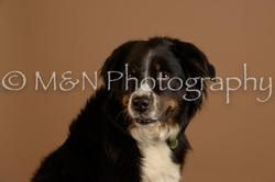 M&N Photography -_SNB0856