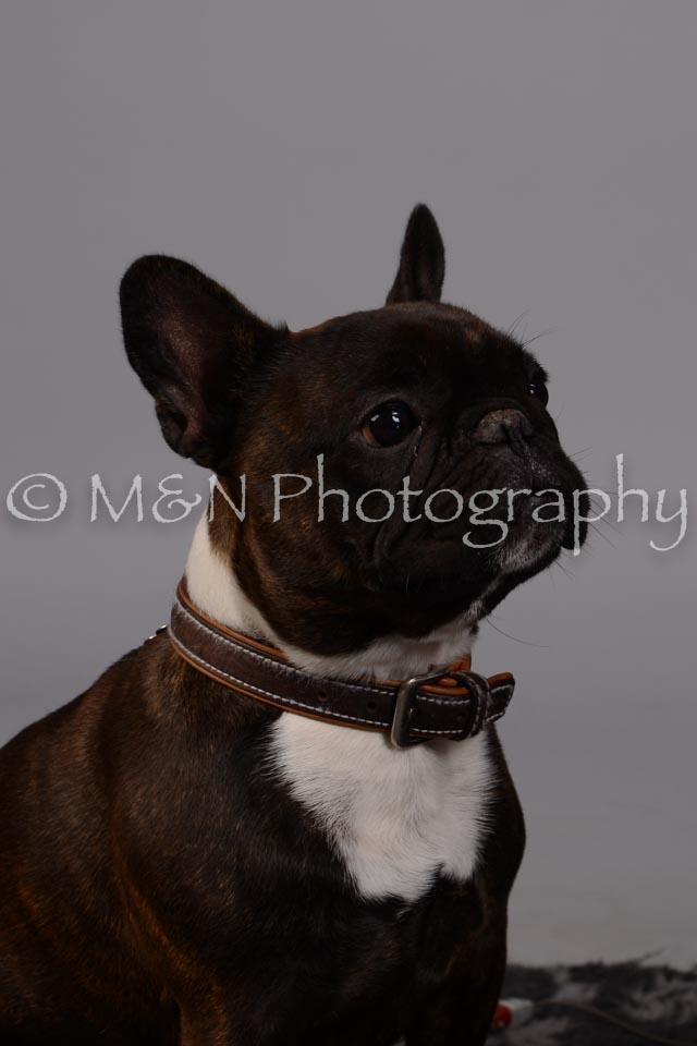 M&N Photography -DSC_2566