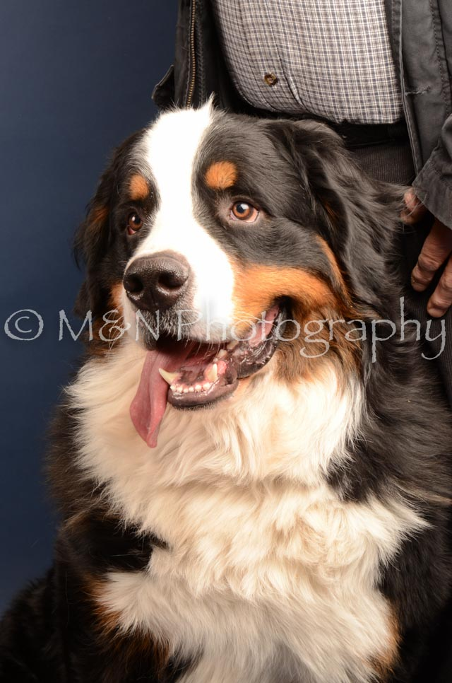 M&N Photography -DSC_4210