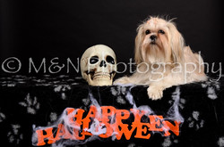 M&N Photography -DSC_5734