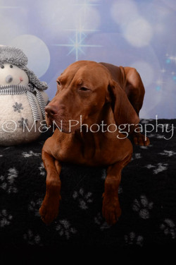 M&N Photography -DSC_7034