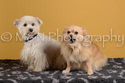M&N Photography -DSC_4834
