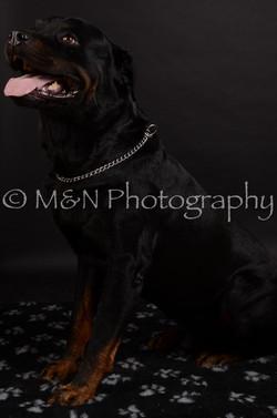 M&N Photography -DSC_5766