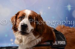 M&N Photography -DSC_7121