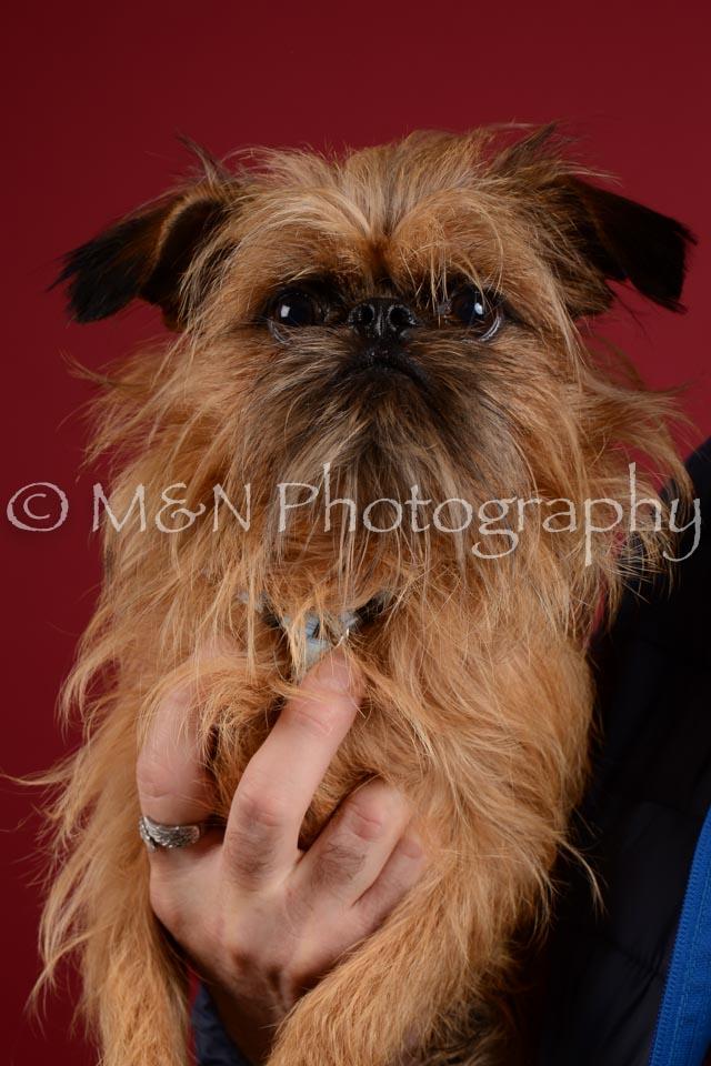 M&N Photography -DSC_3301