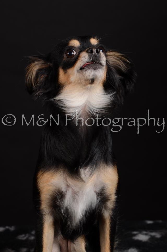 M&N Photography -DSC_5753