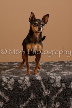 M&N Photography -_SNB0548