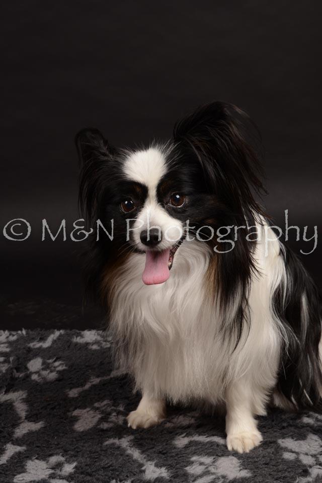 M&N Photography -DSC_9804