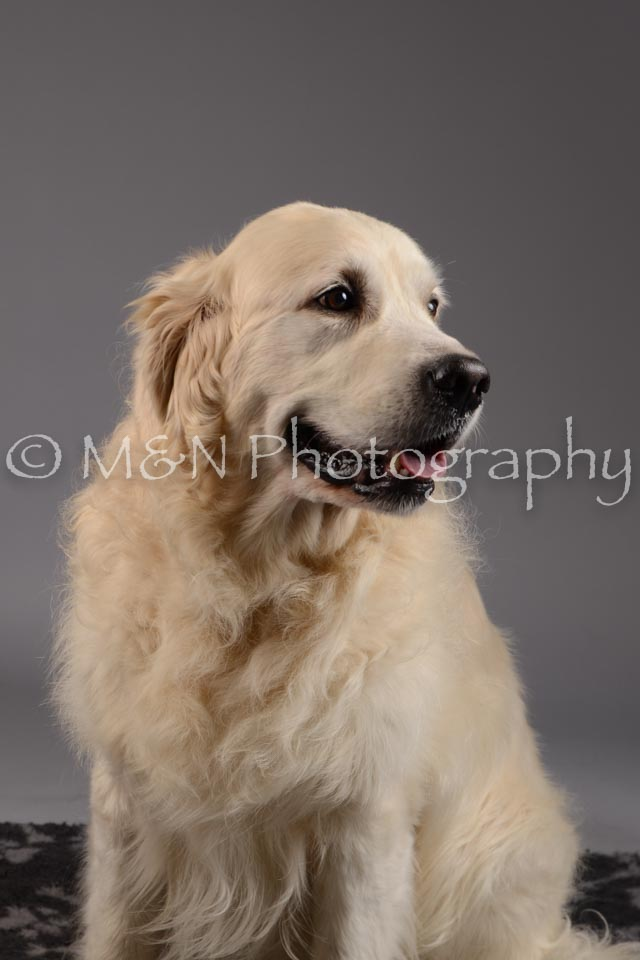 M&N Photography -DSC_1665