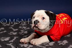 M&N Photography -IMG_4677