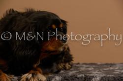M&N Photography -_SNB0678