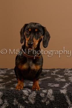 M&N Photography -_SNB0533