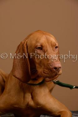 M&N Photography -_SNB0810