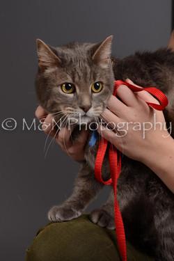 M&N Photography -DSC_2108