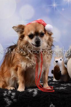 M&N Photography -DSC_6624