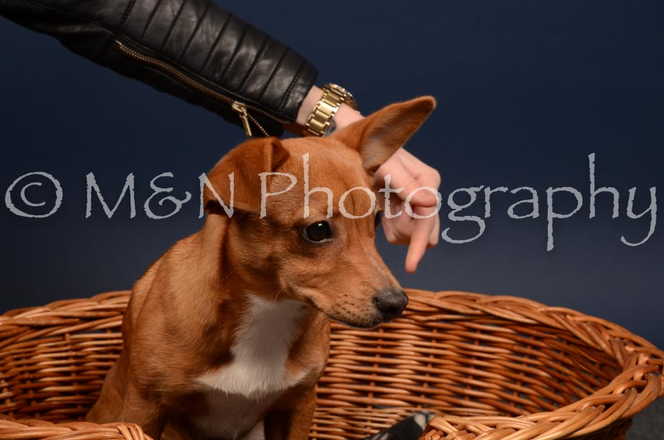 M&N Photography -DSC_4576