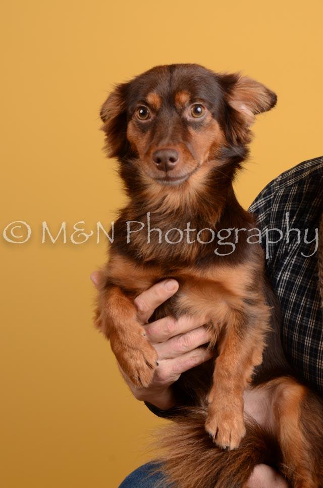 M&N Photography -DSC_4759