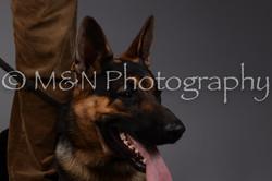 M&N Photography -DSC_1588