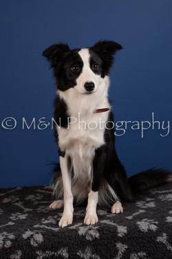 M&N Photography -DSC_5314