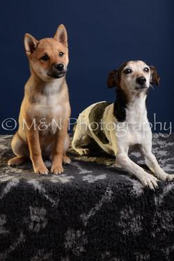 M&N Photography -DSC_3799