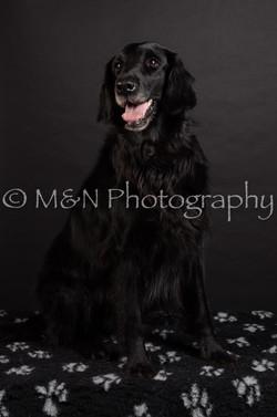 M&N Photography -DSC_5854