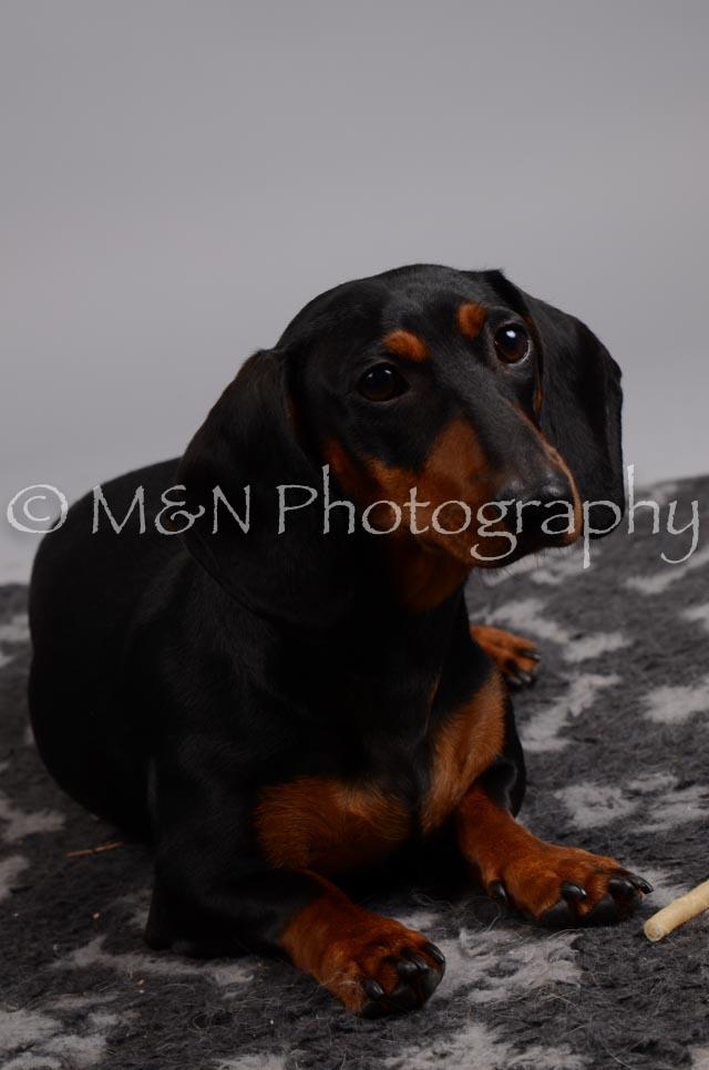 M&N Photography -DSC_2867