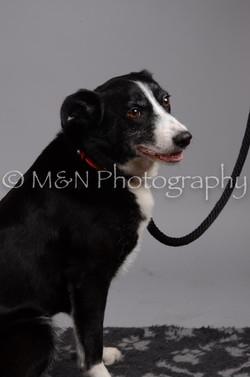 M&N Photography -DSC_2891