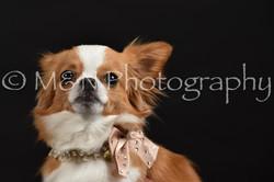 M&N Photography -DSC_2750