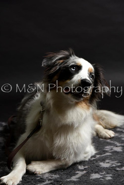 M&N Photography -DSC_2466