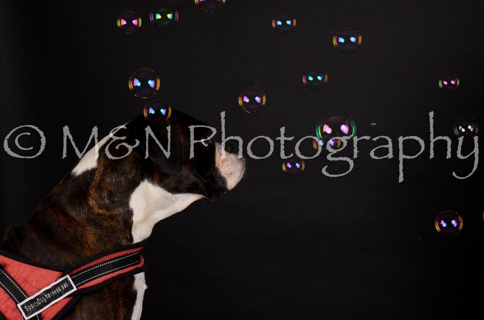 M&N Photography -DSC_5636